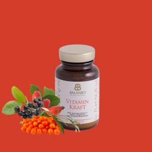 VitaminKraft 70g - natürliche Vitamine aus Beeren in Glas verpackt