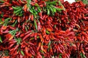 Natürliches-Antibiotikum-in-Pflanzen-Chili-natürliches-Antibiotikum-pflanzlicher-Energie-Booster-mit-Powerbasen