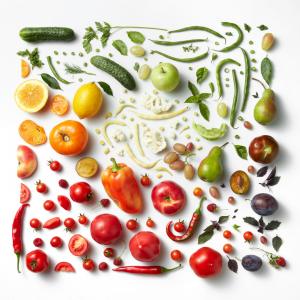 Ernährung Ausbildung Balanso