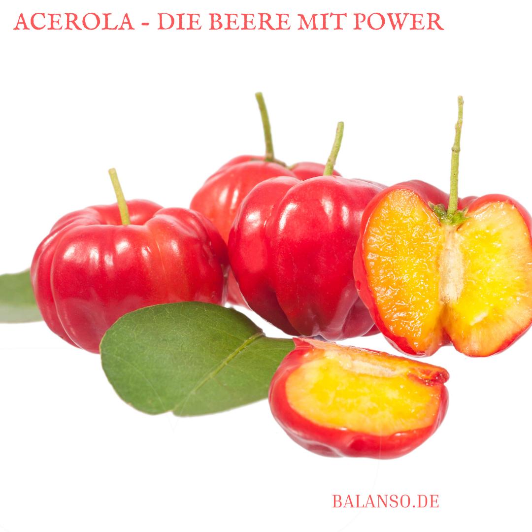 Acerola – Powerbeere