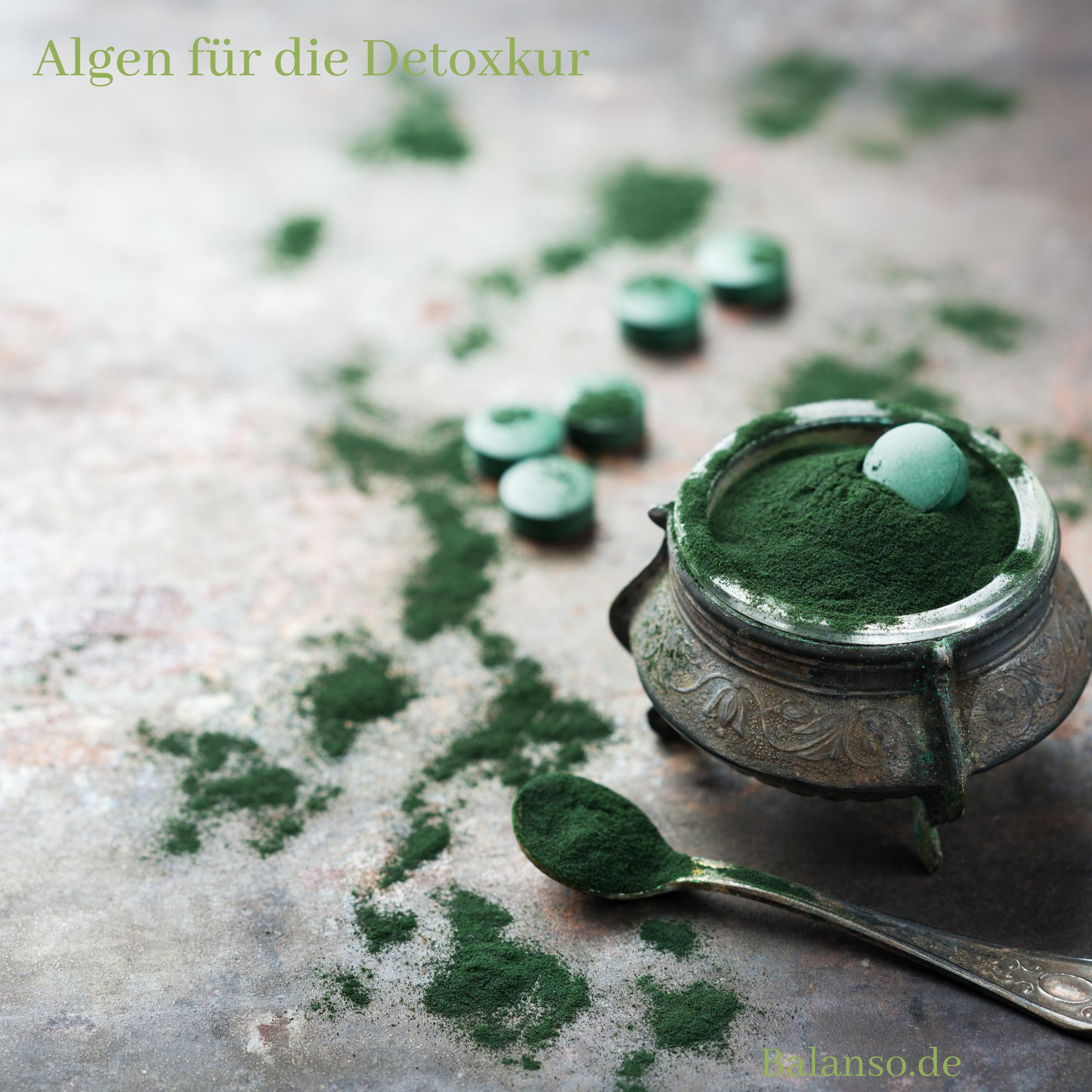 Die beste Algen Kombination für Ihre Detoxkur