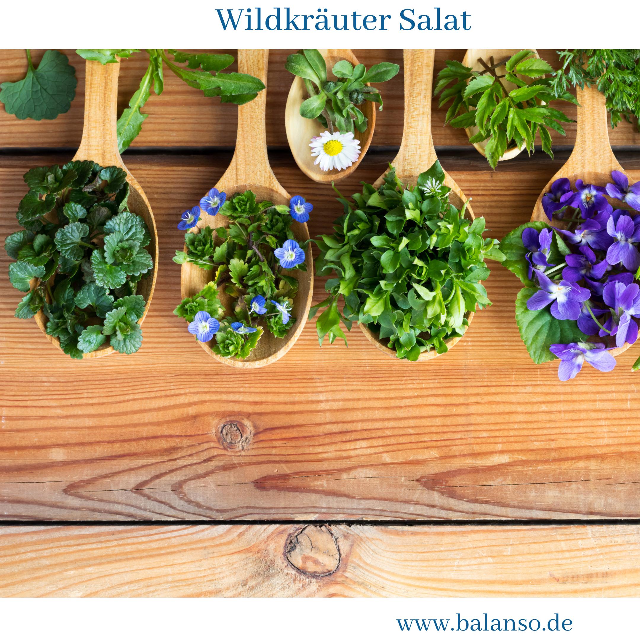 Frischer Wildkräuter Salat – Gesundheit & Farbe für dein Essen