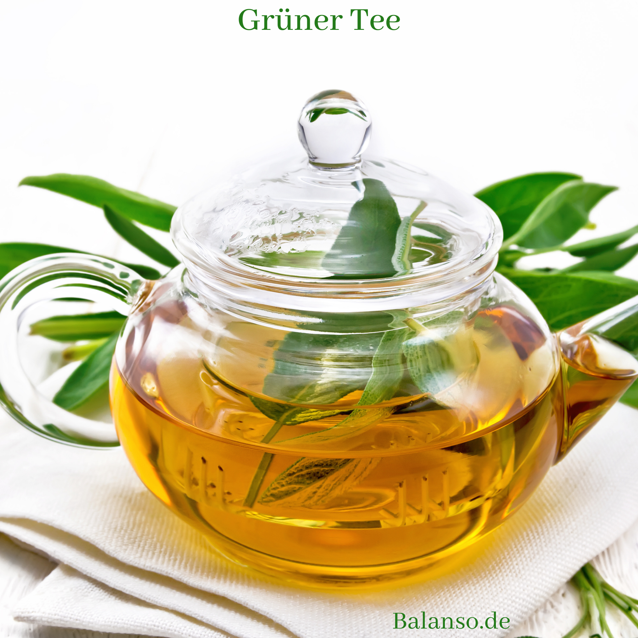 Grüner Tee – Die magischen Blätter zum Entschlacken